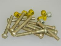 "10 x 1/4"" Pin Rivets Dome Head With Rivnuts Length 1 7/8"" [O13]"